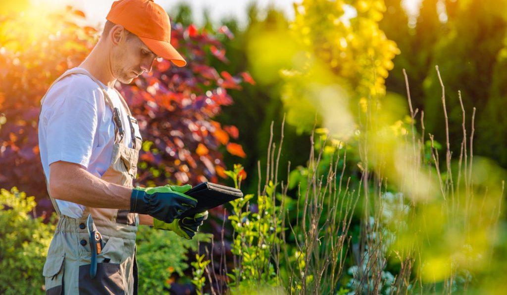 Paysagiste jardinier Arras